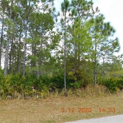 5388 Montego Lane, Port Charlotte, FL 33981 (MLS #W7821193) :: Cartwright Realty