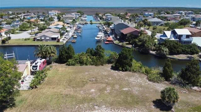 Southwind Drive, Hudson, FL 34667 (MLS #W7822949) :: Pepine Realty