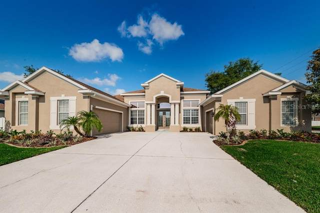 2226 Mountain Ash Way, New Port Richey, FL 34655 (MLS #W7823456) :: Homepride Realty Services