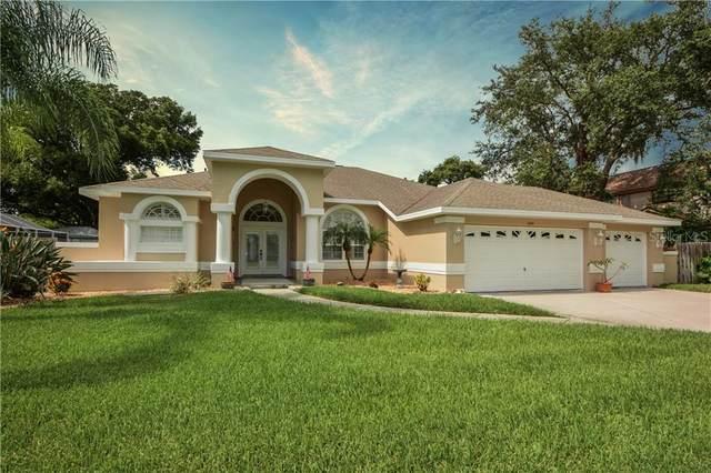 1900 Gulf Beach Boulevard, Tarpon Springs, FL 34689 (MLS #W7824763) :: Griffin Group
