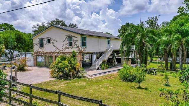 6924 Calvert Avenue, New Port Richey, FL 34655 (MLS #W7824809) :: Team Borham at Keller Williams Realty