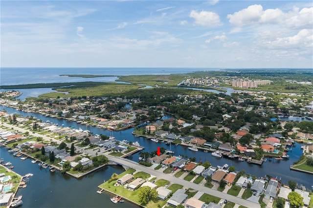 4321 Floramar Terrace, New Port Richey, FL 34652 (MLS #W7825003) :: Delgado Home Team at Keller Williams