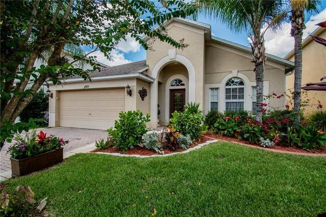 12831 S Solola Way, Trinity, FL 34655 (MLS #W7825439) :: Cartwright Realty