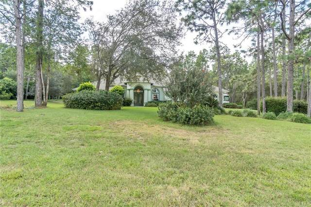 2894 W Beamwood Drive, Beverly Hills, FL 34465 (MLS #W7825543) :: Rabell Realty Group