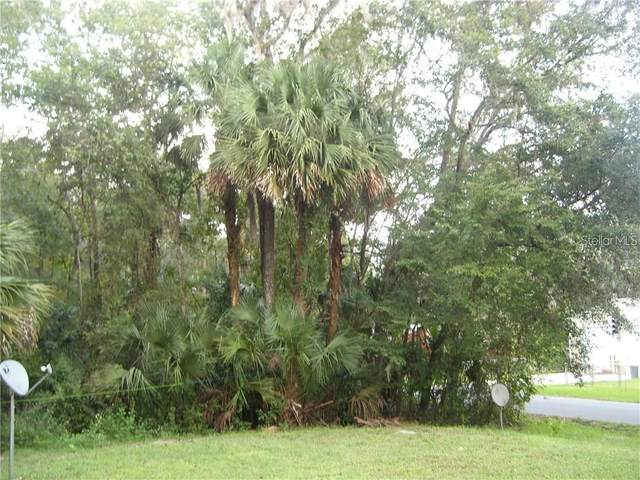 Cr 426, Lake Panasoffkee, FL 33538 (MLS #W7825647) :: Heckler Realty
