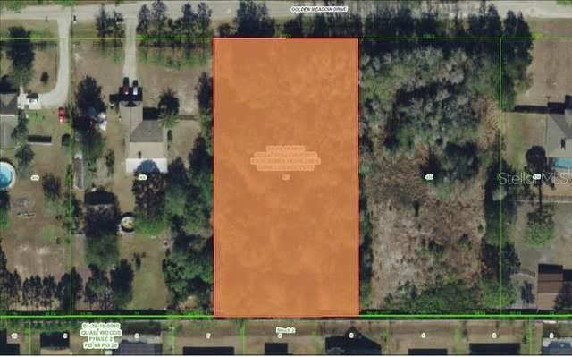 0 Golden Meadow Drive, Wesley Chapel, FL 33544 (MLS #W7827543) :: The Duncan Duo Team