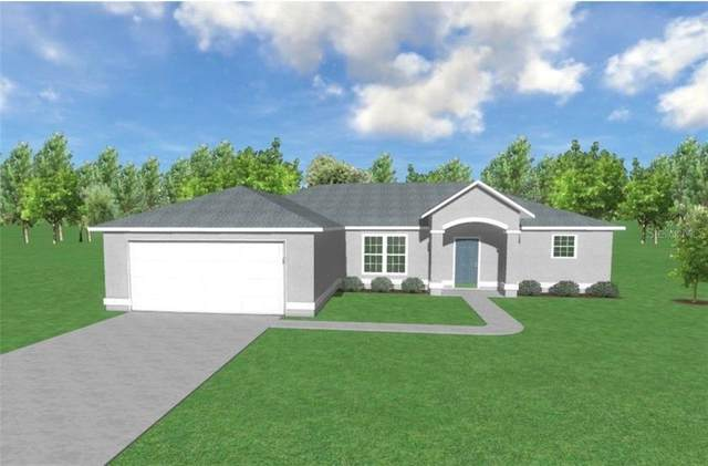 16473 Scaup Duck Avenue, Weeki Wachee, FL 34614 (MLS #W7827686) :: Griffin Group