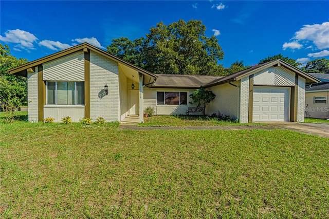 13018 Willoughby Lane, Hudson, FL 34667 (MLS #W7827967) :: Pepine Realty