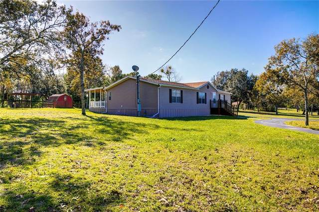 17210 Carlesimo Avenue, Spring Hill, FL 34610 (MLS #W7828639) :: Griffin Group