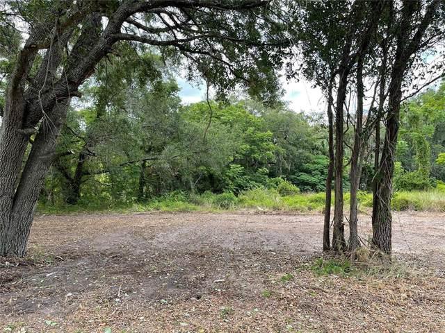 Hicks, Hudson, FL 34669 (MLS #W7829889) :: Griffin Group