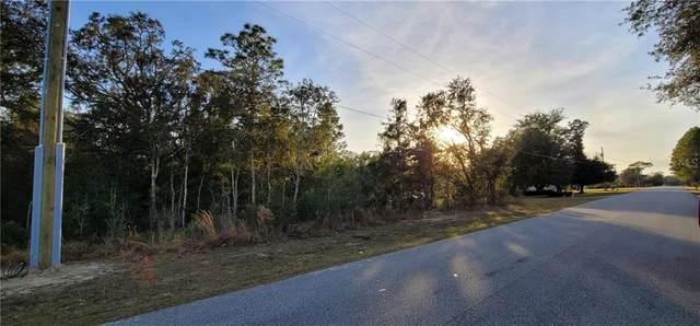 Heron Hills Drive, Spring Hill, FL 34610 (MLS #W7830102) :: BuySellLiveFlorida.com