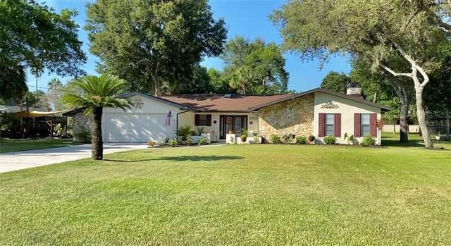 8135 River Country Drive, Weeki Wachee, FL 34607 (MLS #W7830917) :: Team Borham at Keller Williams Realty
