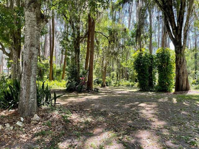 0 Beachway Lane, Odessa, FL 33556 (MLS #W7832041) :: Team Bohannon Keller Williams, Tampa Properties