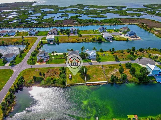 3316 Scarlet Sage Drive, Hernando Beach, FL 34607 (MLS #W7832145) :: Vacasa Real Estate