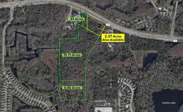 State Road 52, Hudson, FL 34669 (MLS #W7833080) :: Rabell Realty Group
