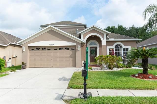 10635 Firebrick Court, Trinity, FL 34655 (MLS #W7833458) :: Premier Home Experts