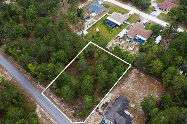 12039 Murre Avenue, Weeki Wachee, FL 34614 (MLS #W7833527) :: RE/MAX Local Expert