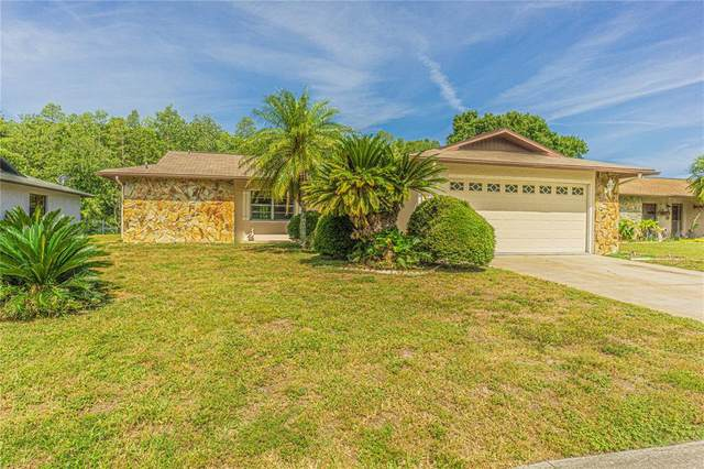 4539 Swallowtail Drive, New Port Richey, FL 34653 (MLS #W7833746) :: Armel Real Estate