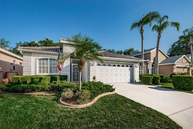 9214 Souchak Drive, Trinity, FL 34655 (MLS #W7833784) :: Delgado Home Team at Keller Williams