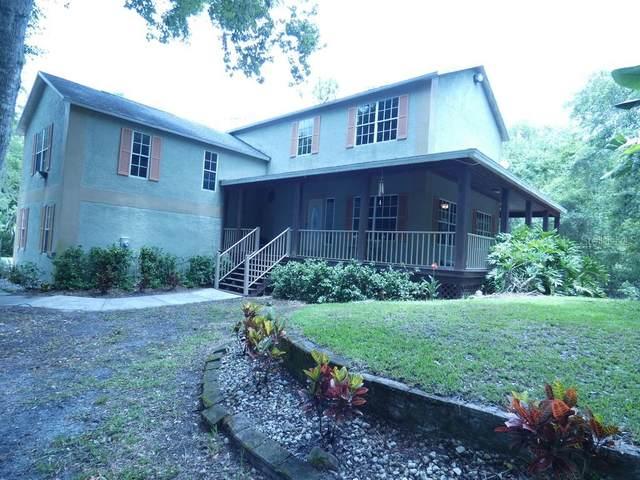 1355 E Lake Drive, Tarpon Springs, FL 34688 (MLS #W7834047) :: Griffin Group