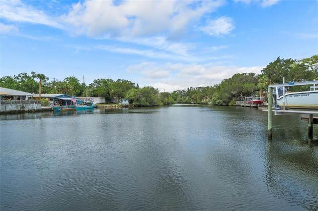 LOT !6 Mccray Drive, Hudson, FL 34667 (MLS #W7834102) :: The Paxton Group