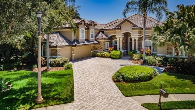 9643 Milano Drive, Trinity, FL 34655 (MLS #W7834121) :: Coldwell Banker Vanguard Realty