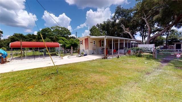1608 Thrush Drive, Zephyrhills, FL 33540 (MLS #W7834290) :: Expert Advisors Group