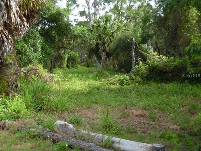 Eunice Drive, Tarpon Springs, FL 34689 (MLS #W7834375) :: Stellar Home Sales