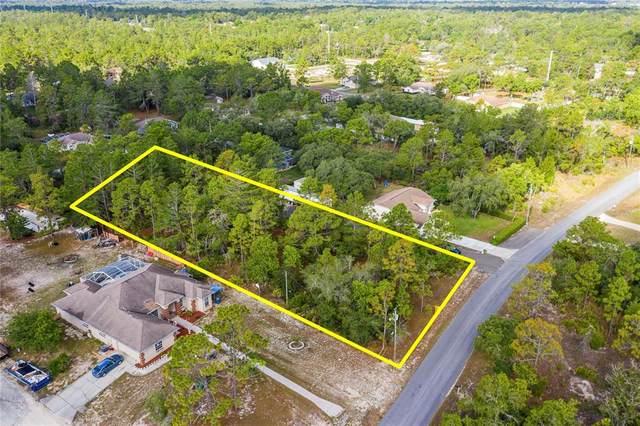 11256 Fool Duck Avenue, Weeki Wachee, FL 34613 (MLS #W7834528) :: Prestige Home Realty