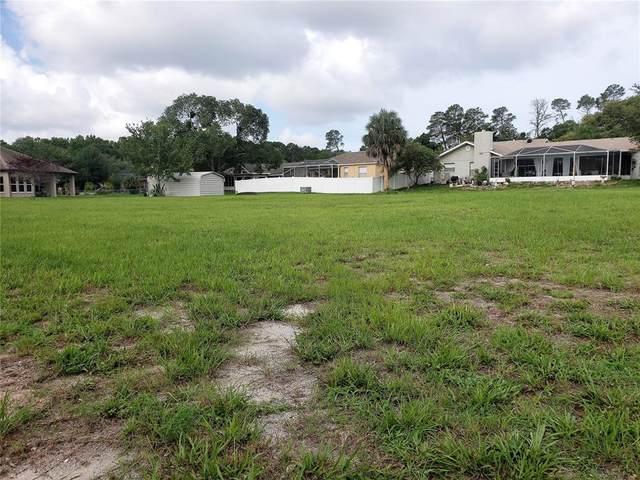 Briar Circle, Hudson, FL 34667 (MLS #W7835597) :: Team Bohannon