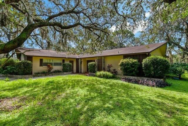 10376 Osceola Drive, New Port Richey, FL 34654 (MLS #W7835736) :: Prestige Home Realty
