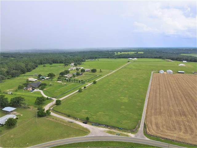 24683 Hayman Road, Brooksville, FL 34602 (MLS #W7835998) :: Prestige Home Realty
