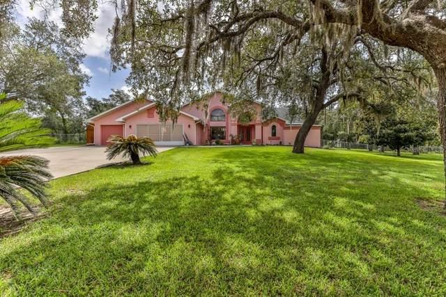 14294 Missouri Skylark Road, Weeki Wachee, FL 34614 (MLS #W7836030) :: Baird Realty Group