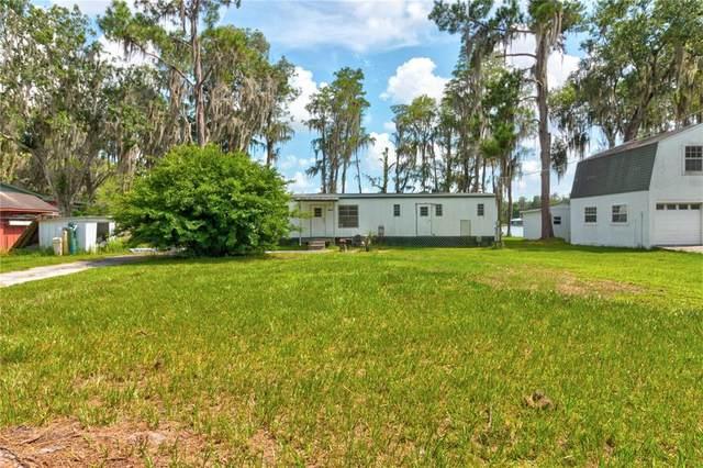 14630 Bluestone Lane, Odessa, FL 33556 (MLS #W7836186) :: Vacasa Real Estate