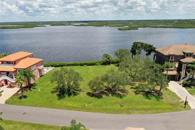 Lot 46 Harborpointe, Port Richey, FL 34668 (MLS #W7836187) :: Zarghami Group