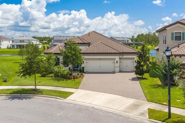 12506 Wild Berry Trail, Odessa, FL 33556 (MLS #W7836340) :: Vacasa Real Estate
