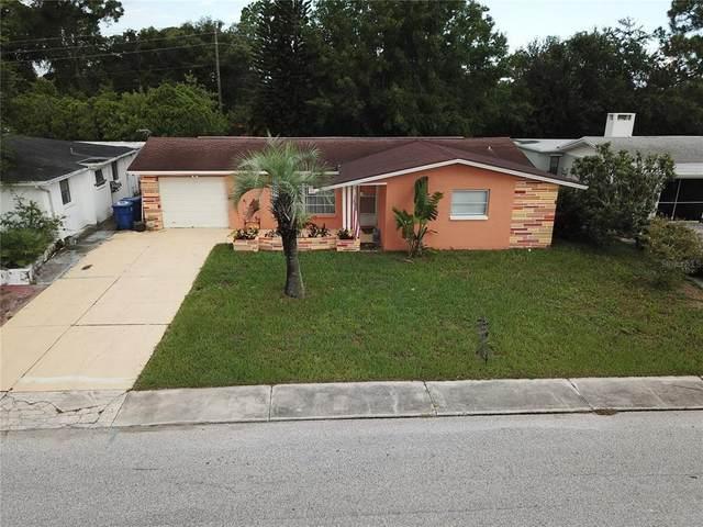 3439 Richboro Drive, Holiday, FL 34691 (MLS #W7836904) :: Zarghami Group