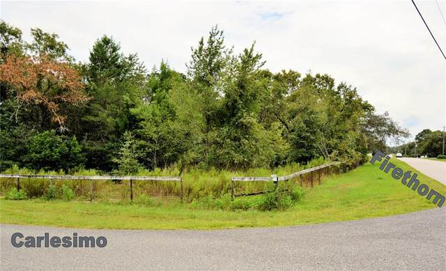 Firethorn Dr And Carlesimo Ave, Spring Hill, FL 34610 (MLS #W7837462) :: The Nathan Bangs Group