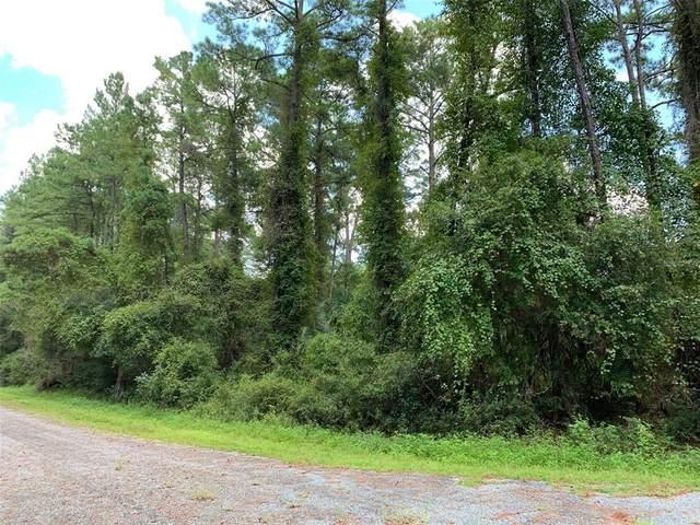 8767 N Ramble Point, Citrus Springs, FL 34434 (MLS #W7837527) :: Zarghami Group