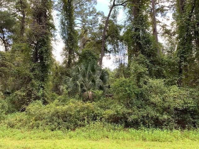 8779 N Ramble Point, Citrus Springs, FL 34434 (MLS #W7837592) :: Zarghami Group