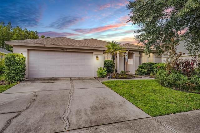 18230 Collridge Drive, Tampa, FL 33647 (MLS #W7838116) :: Zarghami Group