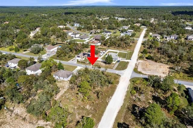 13016 House Finch Road, Brooksville, FL 34601 (MLS #W7838971) :: Everlane Realty