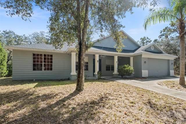 8174 Victoria Way, Weeki Wachee, FL 34613 (MLS #W7839044) :: Everlane Realty