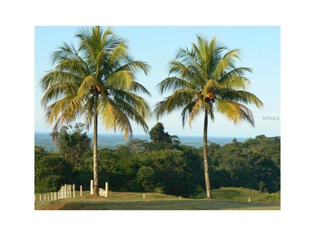 5960 NW Grandview Boulevard NW, CIMMERONES -COSTA RICA, OC 80514 (MLS #A4100619) :: Delgado Home Team at Keller Williams