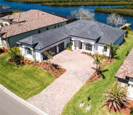 8805 Rum Runner Place, Bradenton, FL 34212 (MLS #A4194451) :: The Duncan Duo Team