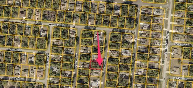 Oporto St, North Port, FL 34287 (MLS #A4195886) :: Team Buky