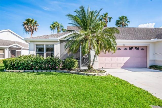 1613 Fairway Oaks Drive, Palmetto, FL 34221 (MLS #A4401068) :: TeamWorks WorldWide