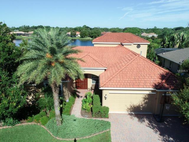 4760 Sweetshade Drive, Sarasota, FL 34241 (MLS #A4404421) :: The Duncan Duo Team