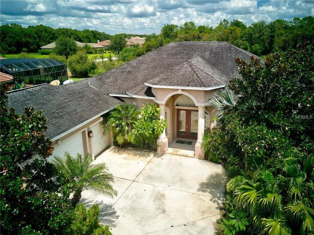 2606 Twin Rivers Trail, Parrish, FL 34219 (MLS #A4404883) :: Revolution Real Estate