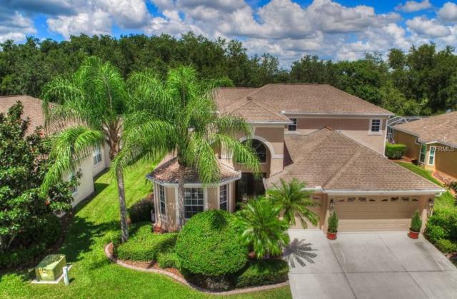7915 Kavanagh Court, Sarasota, FL 34240 (MLS #A4412570) :: Team Bohannon Keller Williams, Tampa Properties